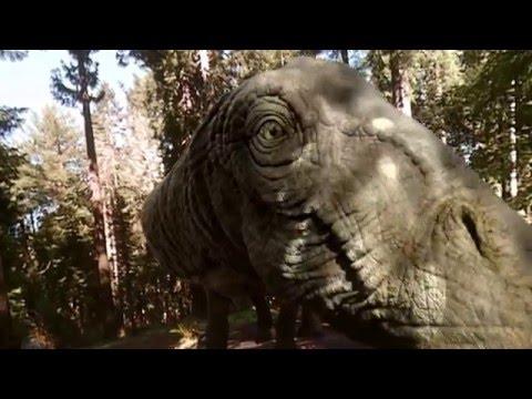 Samsung Gear VR  Cinematic