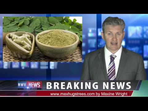 Breaking News...Moringa,  Probably The World's Greatest Superfood