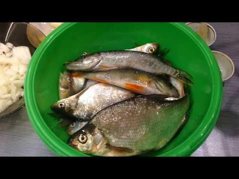 Уха в домашних условиях из мелкой речной рыбы