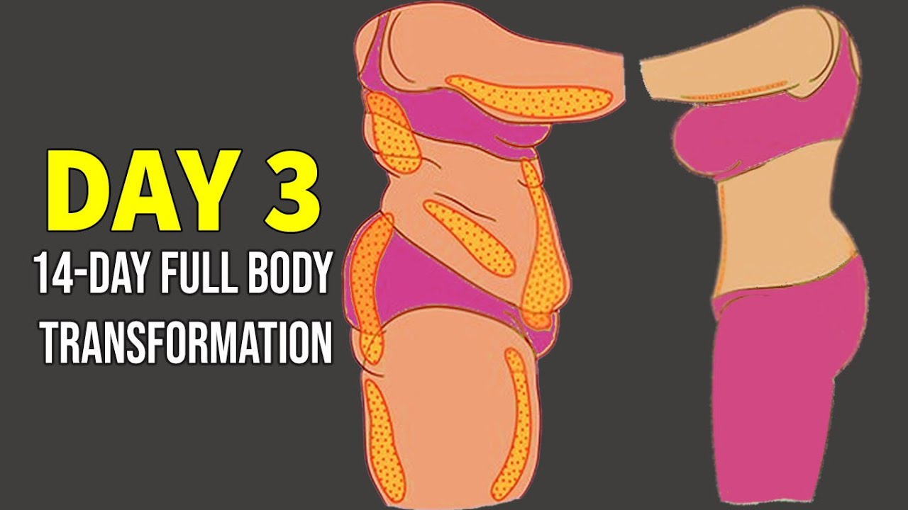DAY 3 | (ARMS + BACK + BELLY ) | 14 DAY FULL BODY TRANSFORMATION PROGRAM