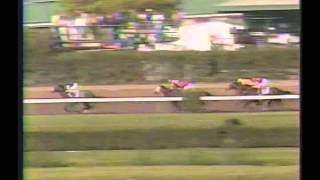 1994 Florida Derby - Holy Bull
