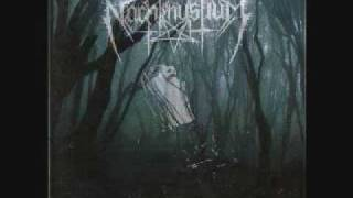 Nachtmystium- Eulogy IV