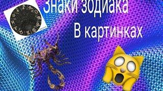Знаки зодиака в картинках!/2часть