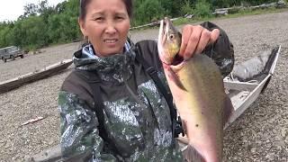 Рыбалка в  п.Чир - Унвд. Первый ход горбуши. часть 1