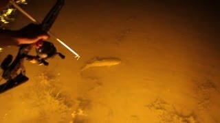Repeat youtube video Bowfishing Swamp Style