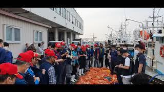7월부터 금어기에 들어가는 붉은대게, 구룡포 수협 홍게…