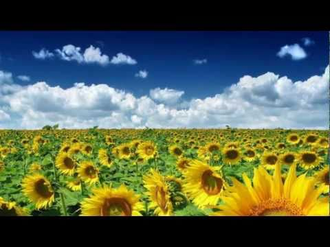 We are Awakening ˙·٠•●♥❤ Deva Premal & Miten