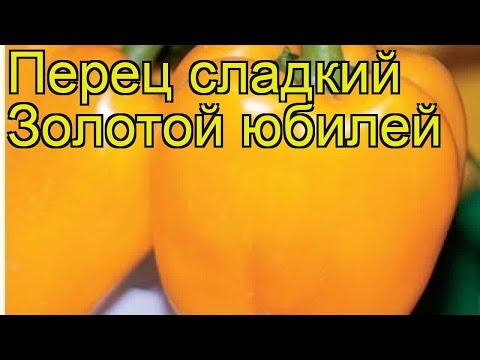Перец сладкий Золотой юбилей. Краткий обзор, описание характеристик Zolotoi iubilei
