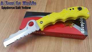 sPYDERCO ASSIST LOCKBACK SALT FOLDING SERRATED BLADE YELLOW HANDLE KNIFE 79PSYL