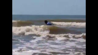 Epic Surf- Galveston Texas -Jackson Surfing Video - Boogie Boarding- Just Learning