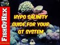 Basic Guide To Curing Ick/Ich With Hypo Salinity