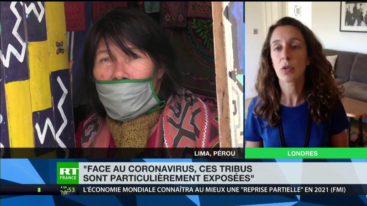 Amazonie : «Les tribus sont particulièrement à risque, et le coronavirus pourrait les anéantir»