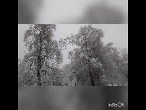 """""""Хорошо""""А.Маршал/Н.Расторгуев/А.Иванов"""