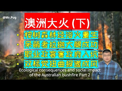 澳洲大火的生态后果及社会影响-(下)/-ecological-consequences-and-social-impact-of-the-australian-fire-part-2
