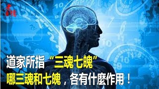 """道家所指""""三魂七魄""""哪三魂和七魄,各有什麼作用!"""