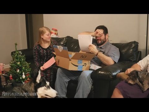 Adoption Papers Surprise Compilation #1 January 2017