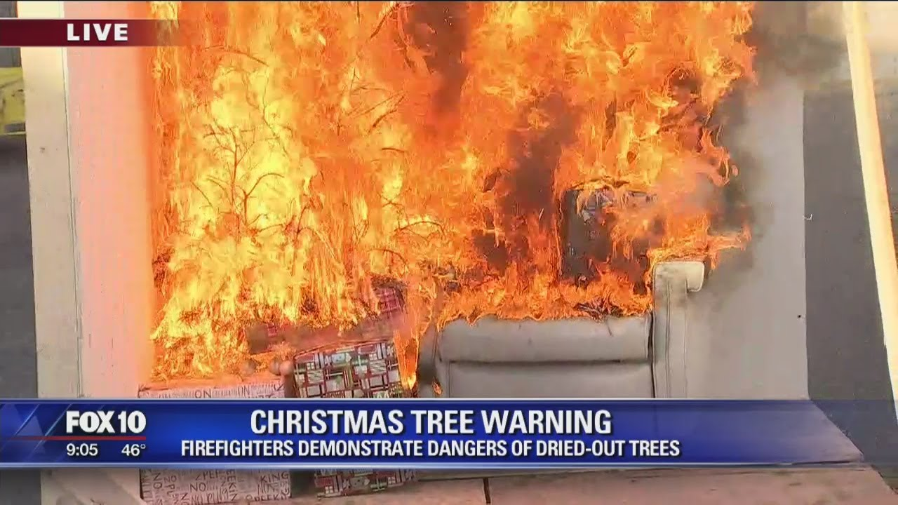 Phoenix firefighters demonstrate dangers of dried-out Christmas trees