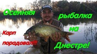 Рыбалка на Днестре Карпы Паланка Лещ Рыбалка Маяки Рыбацкий рай Отличная рыбалка Крупный карп