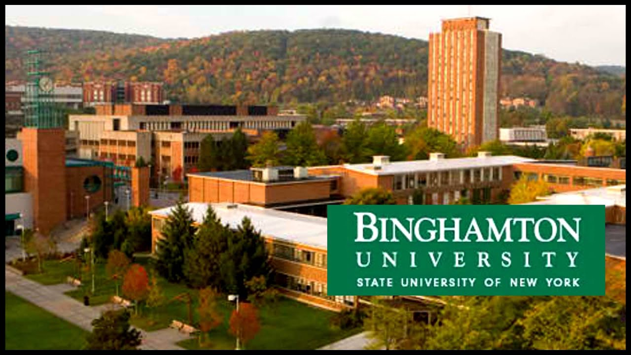 binghamton university on social inequality Herc jobs: academic/faculty, , binghamton, new york , assistant professor - popular participation in economic decision making - binghamton university at binghamton university.