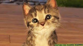 ПРИКЛЮЧЕНИЕ МАЛЕНЬКОГО КОТЕНКА - мультик для детей и малышей Little Kitten мультфильм про котят