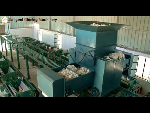 Cotton Ginning Automation Plant, Raw Cotton Ginning Machine,  India