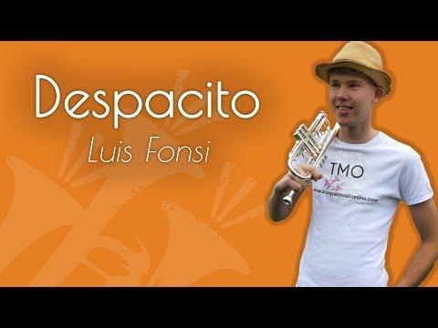 Luis Fonsi - Despacito (TMO Cover)