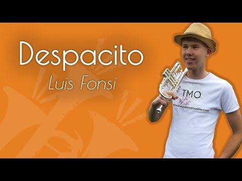 Luis Fonsi - Despacito (TMO Cover)