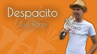 Luis Fonsi Despacito TMO Cover.mp3