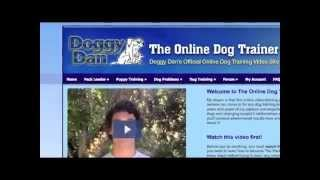 Tour Of The Online Dog Trainer For Puppy Owners