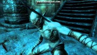 The Elder Scrolls V Skyrim Raldbthar Walkthrough