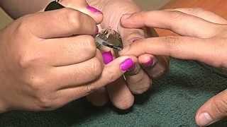 elma nail  Technology school