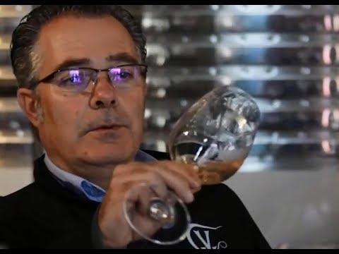 China Railway Express benefits Spanish wine merchant| CCTV English