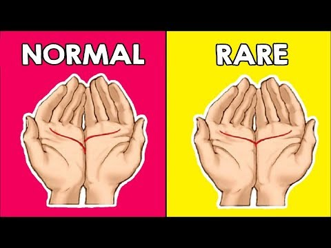 Read Your Palm To Find Out What It Means...