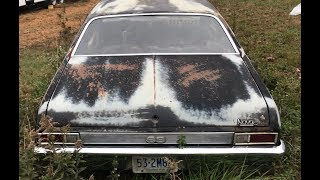 YARD FULL OF NEGLECTED MUSCLECARS FOUND