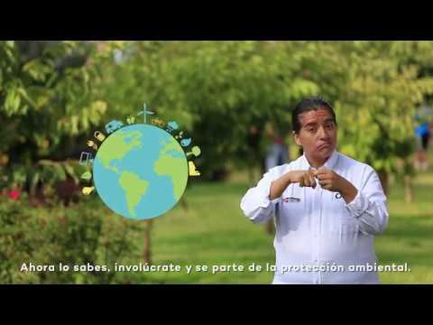 Servicio de Información Nacional y Denuncias Ambientales del OEFA