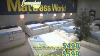 Sealy Sleep Well Sale Nov 2010.wmv