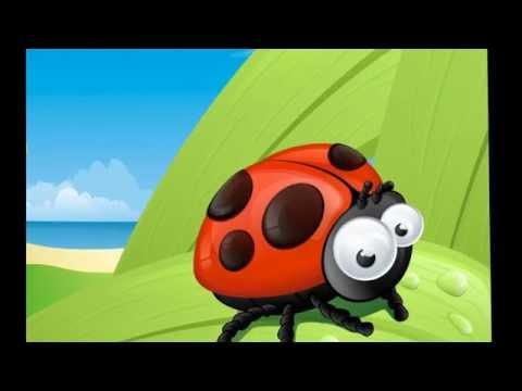 Популярные мультфильмы онлайн в хорошем качестве бесплатно