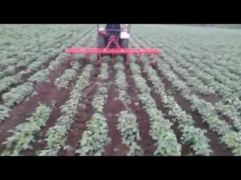 Superub modern agriculture cultivator machine of row crop cultivator..