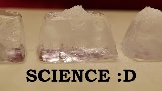 What happens when you put salt on ice cubes?