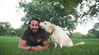 A Veteran Shares How a Stray Dog Changed His Life