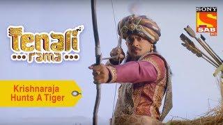 Your Favorite Character | Krishnaraja Hunts A Tiger | Tenali Rama