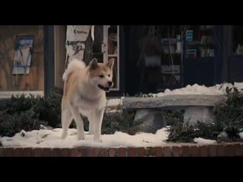 Смотреть онлайн Хатико: Самый верный друг / Hachiko:A Dog