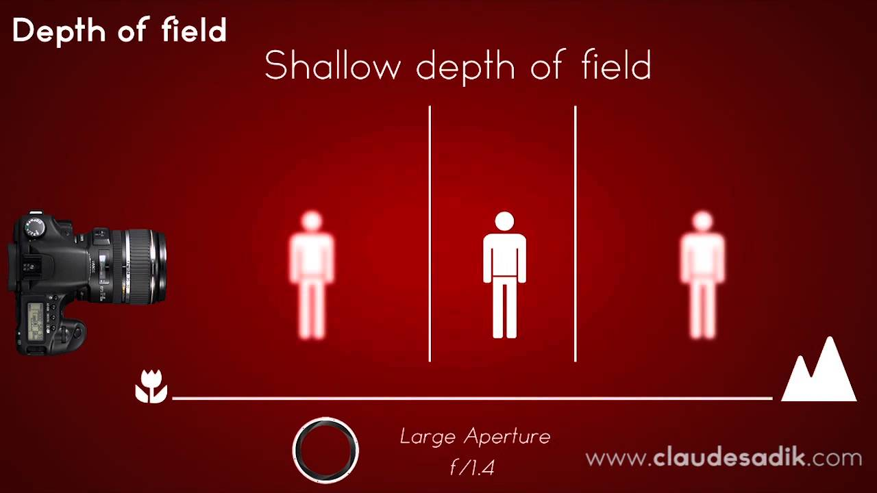 Image result for Physics Depth of Field Photography