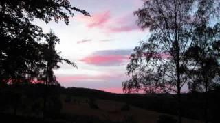 Bushido Dieser eine Wunsch & songtext(lyrics)