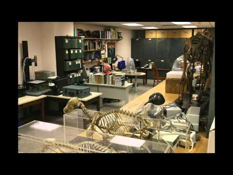 Photo Essay: Libraries of Life / Berkeley Natural History Museums