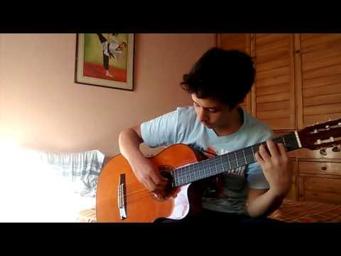 Cover guitarra acústica - Aria Math c-418Minecraft