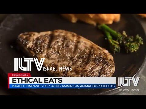 Israeli Companies Replacing Animals In Animal By-products