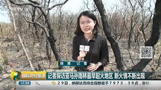[国际财经报道]热点扫描 记者探访亚马孙雨林最早起火地区 新火情不断出现| CCTV财经