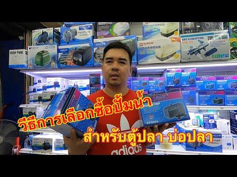 แนะนำวิธีการเลือกซื้อปั้มน้ำ ตู้ปลา บ่อปลา