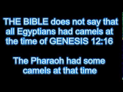 Camels in THE BIBLE (1 of 2)